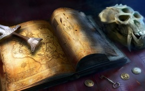 book, sword, map, video games, skull
