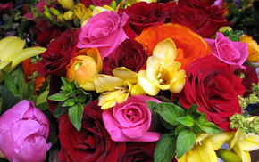 bouquet, flowers, flower, roses