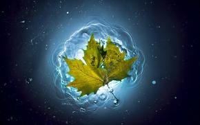 summer, water, stunner, leaf