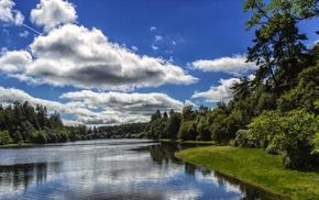 пейзаж., трава, облака, лес, река, Природа