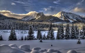 Природа, горы, снег, пейзаж, зима, ели