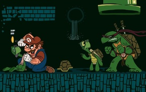 Teenage Mutant Ninja Turtles, turtle, video games, glasses, sword, fighting