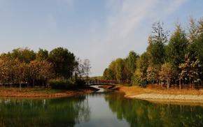 autumn, pond, park, trees