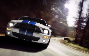 Shelby, Ford Mustang, muscle cars