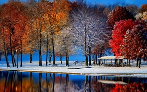 pond, winter, reflection, trees, snow