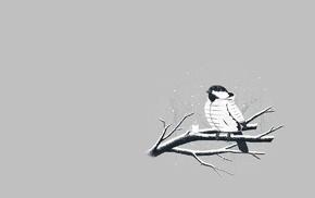 minimalism, birds, jacket
