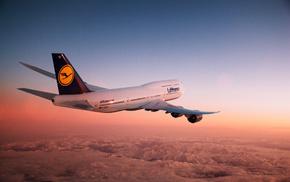 airplane, sunset, aircraft, sky