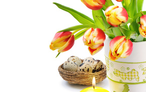 flowers, tulips, candles