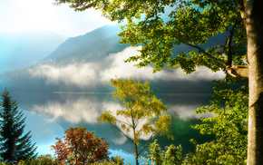 mountain, reflection, mist, morning, trees