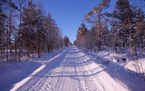 winter, snow, forest, road