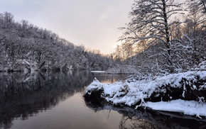 snow, winter, trees, water, forest
