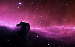 Horsehead Nebula, space