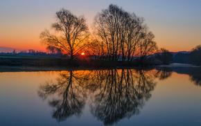 England, trees, nature, evening, Sun