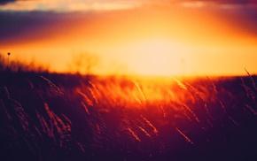 sunrise, sunlight, dark, landscape, nature