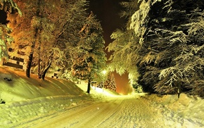 lights, trees, snow, road