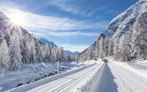 winter, Sun, snow, Christmas tree, road