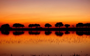 sunset, silhouette, trees, landscape, reflection