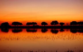 закат, силуэт, деревья, пейзаж, отражение