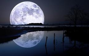 пейзаж, природа, деревья, луна, озеро