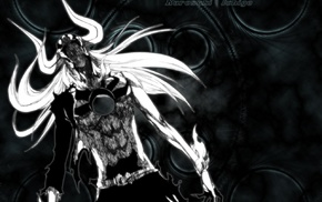 Hollow, Kurosaki Ichigo, Bleach, monochrome, anime
