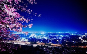 lights, city, sakura, cities, night