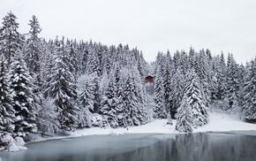Switzerland, lake, winter, nature, trees