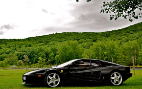 nature, forest, Italy, sportcar, trees