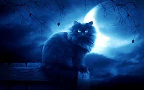 black, moon, clouds, night, cat