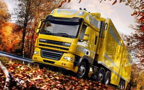 autumn, power, road, foliage, yellow