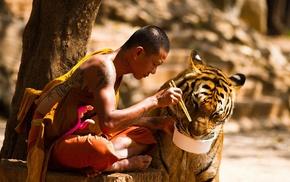 monks, trees, animals, sitting, tattoo, chopsticks