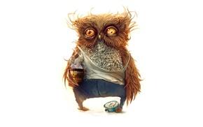 owl, coffee, morning