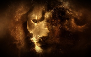 цифровое искусство, лев, животные