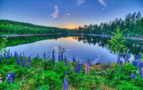 sky, lake, nature, lodge