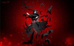 Naruto Shippuuden, anime, raven, Uchiha Itachi, anime boys, Akatsuki