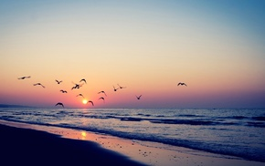 пляж, море, закат