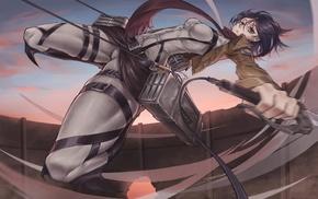Mikasa Ackerman, аниме, девушки из аниме