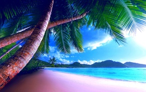 beach, jungle, palm, ocean, sand
