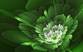 green, flower, background, abstraction, white