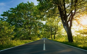 nature, road, Sun, greenery, trees