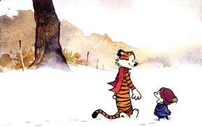 Calvin and Hobbes, comics