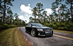cars, black, road, wheels, trees