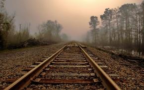 деревья, туман, листья, железная дорога