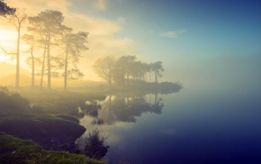 lake, water, trees, mist, nature
