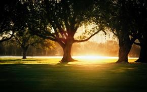 природа, закат