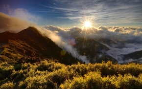 mountain, morning, clouds, forest, Sun