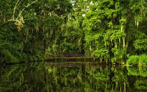 вода, США, природа, мост, зеленый фон, отражение