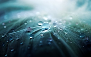 капли воды, пейзаж