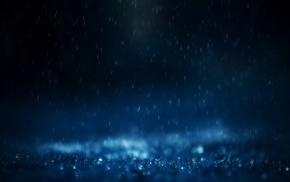 rain, macro, leaves, nature