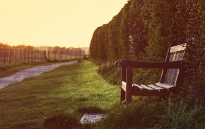 depth of field, bench