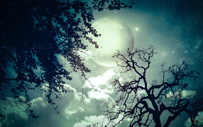 night, moon, photoshop, fantasy, trees